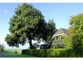 Huis voorkant 2014-08-23 08.29.46 (3).jpg
